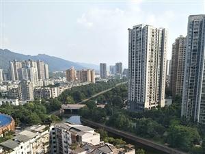 单价六千景观高层大三房户型相当好带入户花园虹都景苑