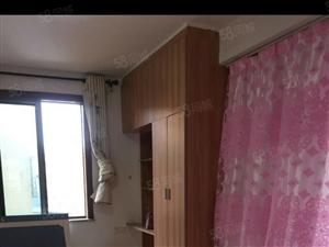 单身公寓都市阳光环境优美