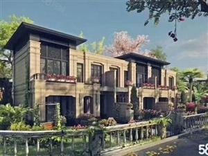 房博士洞庭湿地别墅群岛合众领岛四层联排别墅带院子送露台