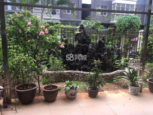 竹林雅苑1楼带花园3室2厅2卫