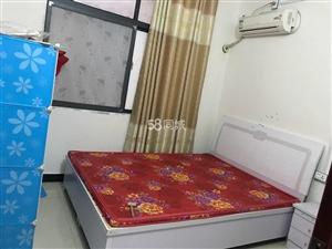 淅川一小2室1厅1卫