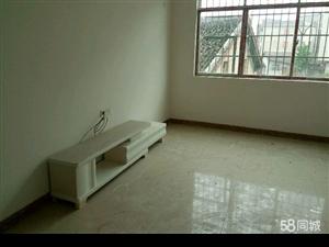 教育路新房新装修出租2室2厅1卫