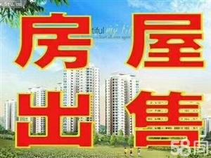 伊东水城有证可分期3室2厅2卫