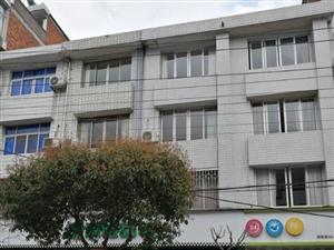 泰庆南路黄金路段榴式房屋出租8室1厅3卫