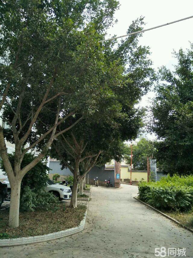 澳门拉斯维加斯平台县示范小学住宿区3室2厅1卫1厨1阳台