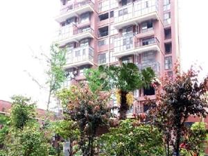 澳门太阳城网站市中心整栋二层4室1厅1卫