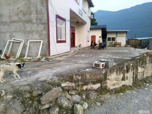 枣林加油站背后房屋出售