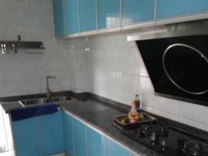 西郊滨江国际2室2厅113平米简单装修押一付三