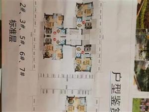 椰海家园指标急售3室2厅2卫128㎡