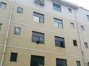 临川梦湖国税局宿5室3厅200平米精装修押一付三