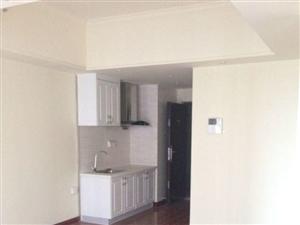 新罗万达SOHO2室1厅72平米简单装修押一付三