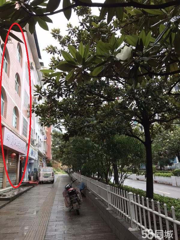 麻江温州路1室1厅1卫600平米