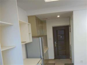 万达旁中央公馆高档小区独门独户酒店式单身公寓精装修拎包入住1室1厅1卫