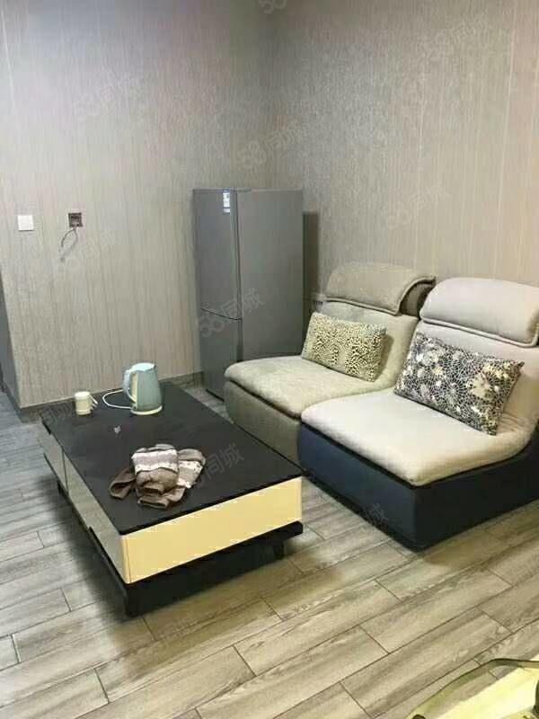 时代广场单身公寓豪华装修!!!