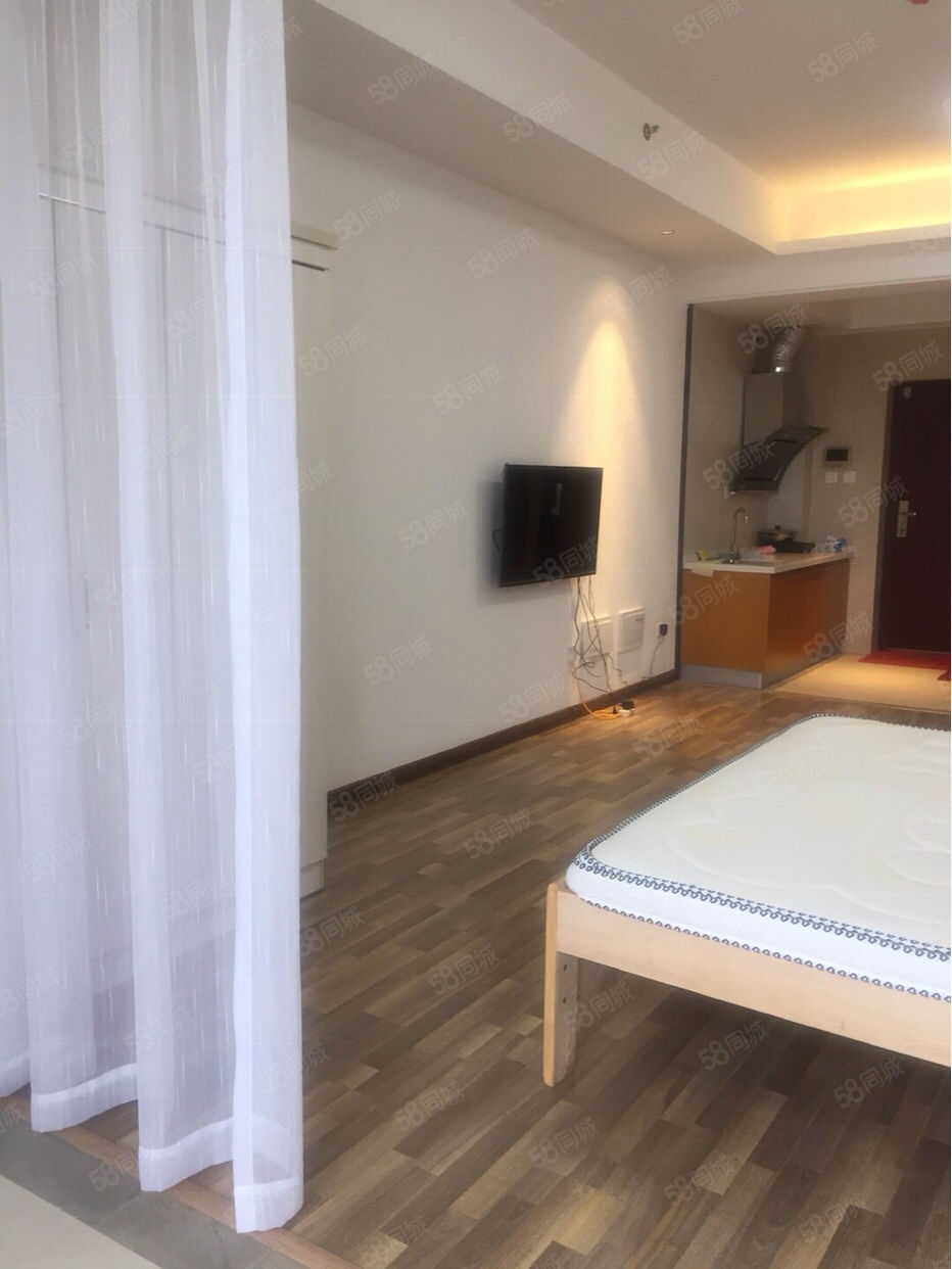 高档公寓,独门独户,设备齐全,拎包入住,精装单身公寓