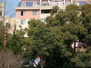 金色公寓降价房源32万首付11万四房两厅双证齐全毛胚房