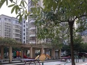 公路局宿舍西粤路3房2厅100平方81.8万.精致装修.