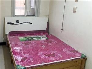 巴厘岛一室一厅简单装修价格美丽交通便利