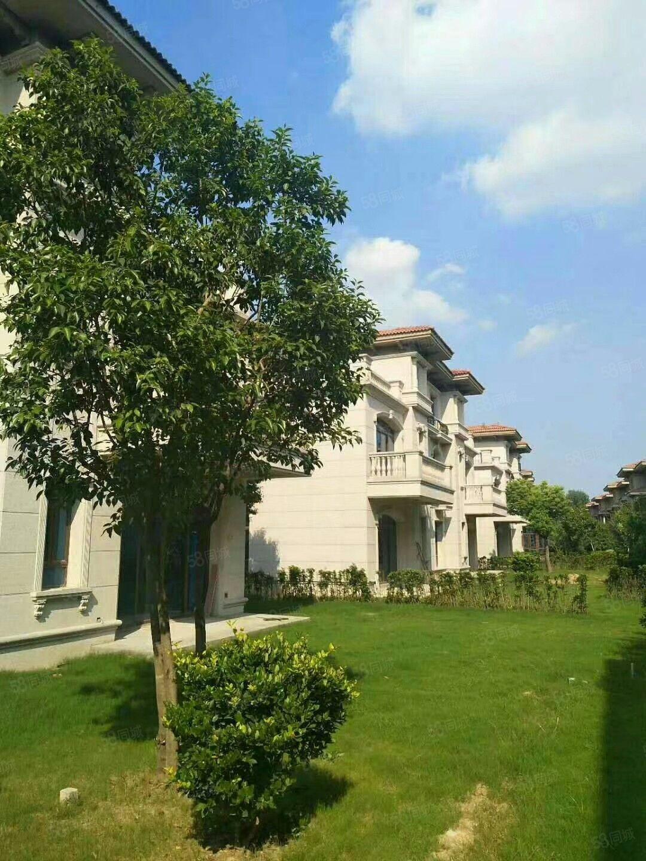 亿都碧桂园品质品位的房子前后绿化覆盖无限空间经典别墅