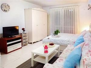 登高西路金茂领秀城繁华地段精装单身公寓出租、房源、