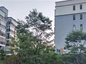 德城逸景小区7楼住房出售