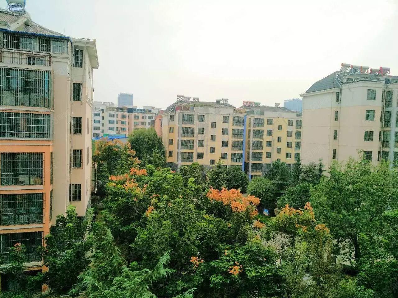 《赠车库》杨柳国际新城123平+有证可贷款+南北通透+大客厅