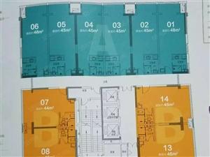 伊顿庄园公寓精装修可以按揭对面是学校