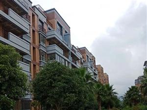 唯一一套福泽苑中间楼层大平层140平米4楼亏本处理