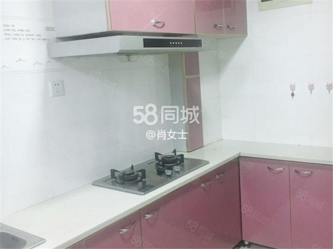 鑫兴房产南山鑫苑拎包即住照片真实温馨一小居室
