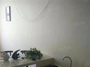 棘洪滩正橹国际一手房精装修公寓27平仅需15万