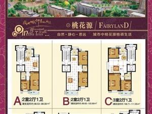 桃花源小区,2800一平米,电梯房,2居,3居。