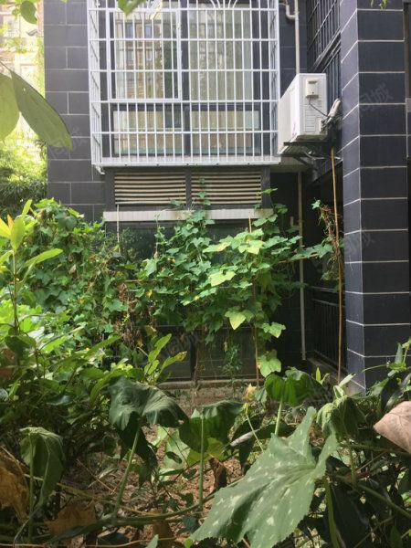 售城南江边小三室一楼带花园,东西户任选