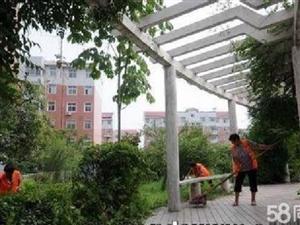 新华路小学首付仅13万,康馨花园5楼2室,有证可贷款按揭,