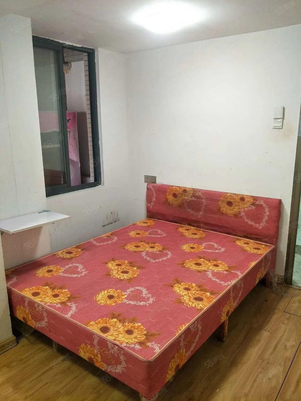 鸿福豪门电梯房单身公寓一室一卫家电齐全出租