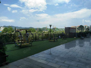 天怡花园精装新房七楼电梯房出售
