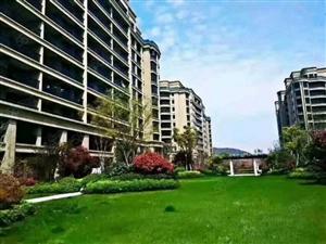 绿城蔚蓝公寓五期,ZUI好的双间朝南户型,套数不多,急