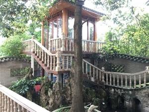 中银花园豪华别墅,装修和家具家电两百多万,带300平米花园