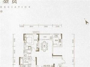 7层电梯洋房首付20三层