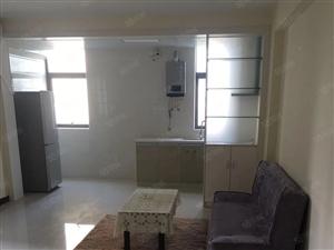 国际广场精装电梯房出租一室一厅家电齐全拎包入住