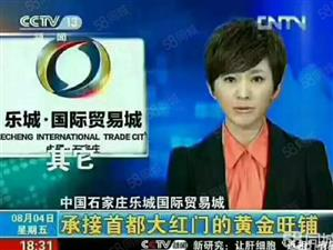 石家庄乐城贸易城北京大红门天意疏解区现房五证全