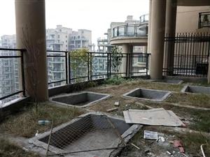 .佳乐世纪城绿韵客厅带空中花园看中庭仅此一套出售