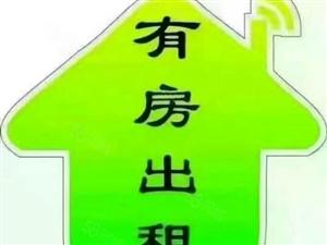 天子路附近两房一厅出租900元/月