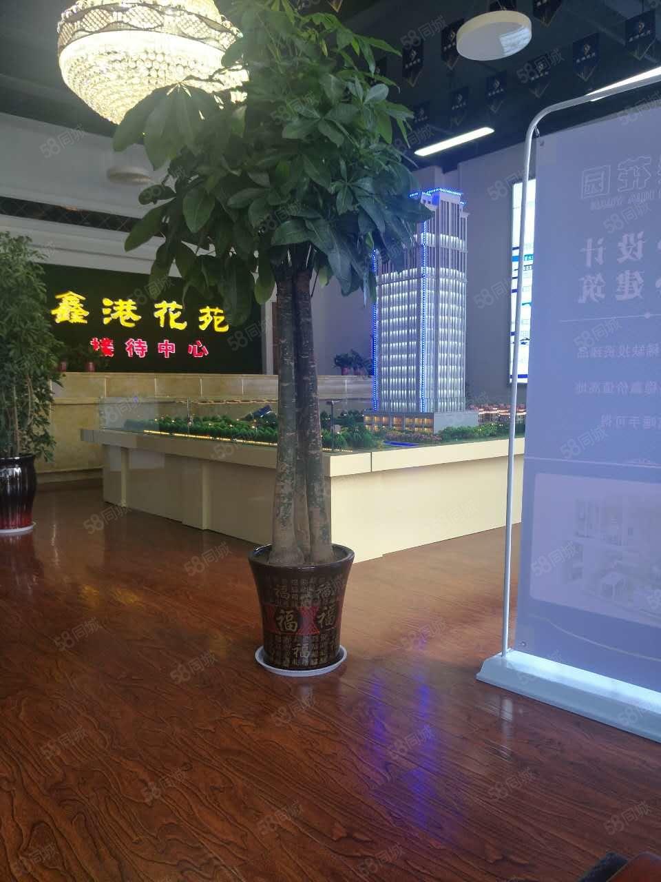 大学南路鑫港花园优质LOTF双气小豪宅临近地铁口