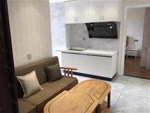 首付八万买龙腾南路电梯精装朝南单身公寓城市向南发展