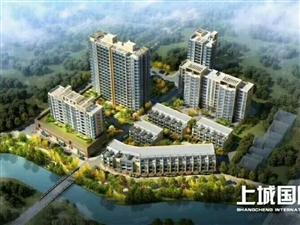 上城国际,送精装修,首付只要5万.五年免月供,五酒店管理