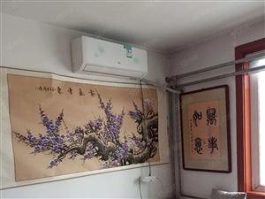 杨柳国际新城2室精装修家具家电齐全1200元