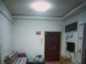 银河花园单身公寓1室1厅精装修