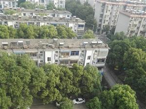 东方雅苑,10楼,2室,91平,精装修未住人,靠石化一校