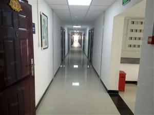 个人出租仁恒公寓设施全新免费WIFI拎包入住