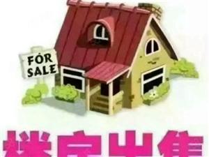 精品三室房屋出售,先到先得。